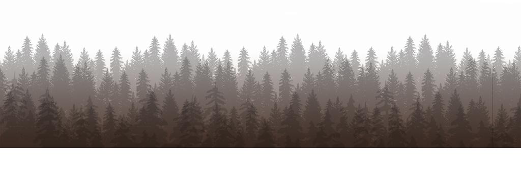 Tree Line Lost Lake Lodge