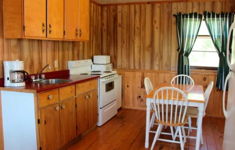 Cabin Kitchen and Dining Table
