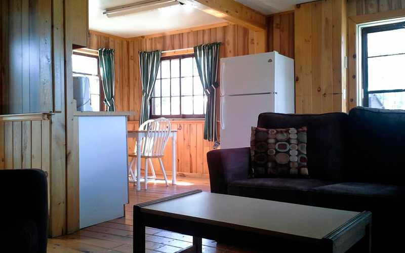 Cabin Living Area and Kitchen